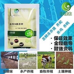 养殖场用的发酵床养猪是什么原理