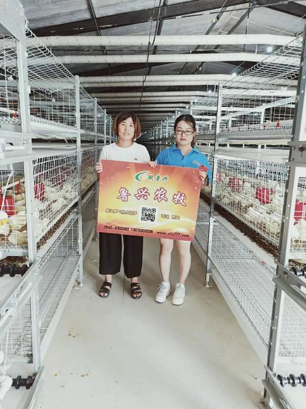 鲁兴农牧肉鸡厂肉鸡舍的卫生管理