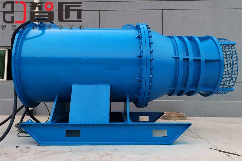 天津智匠泵业潜水轴流泵说明