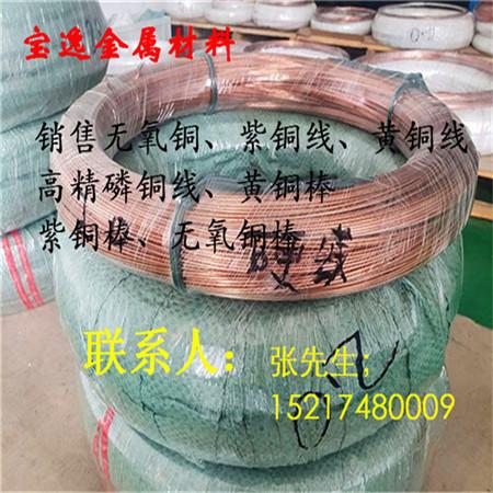 宝逸供应进口t2红铜线c10100无氧铜丝软态半硬紫铜线