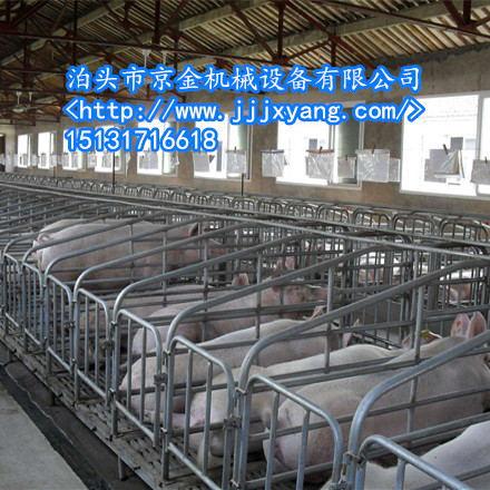改良版母猪产床京金造