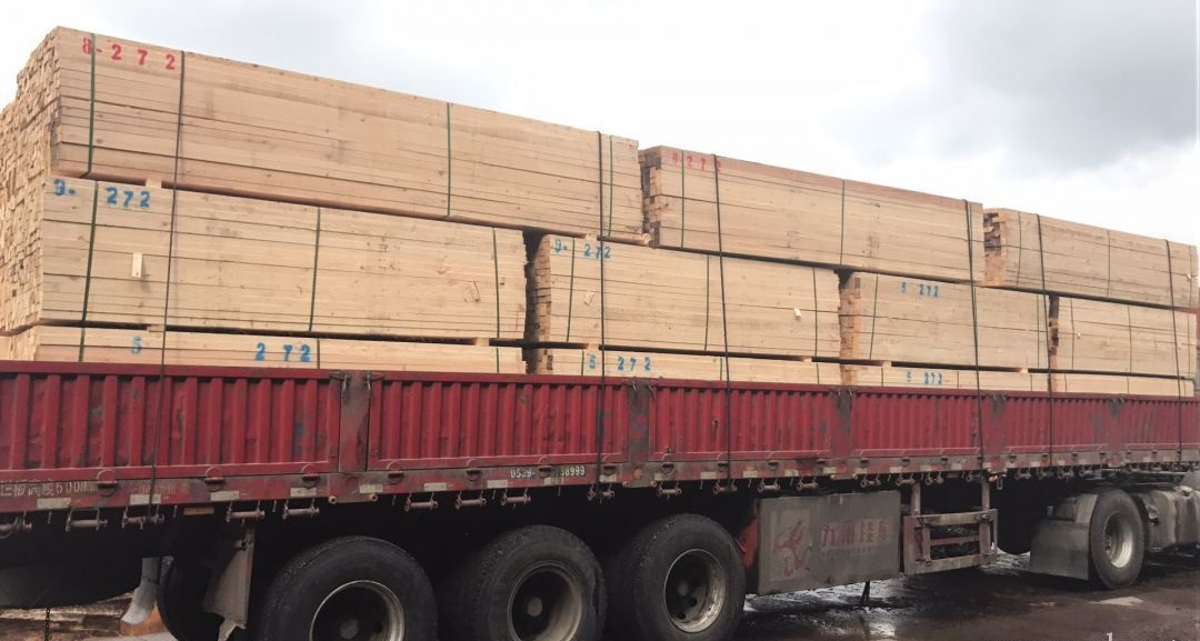 台州铁杉建筑木方厂家
