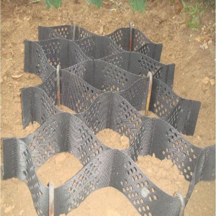 环保护坡纹面打孔蜂巢土工格室边坡堤坝加筋焊接土工格室