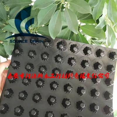 绵阳建筑车库防水排水板(行业标准疏水板)
