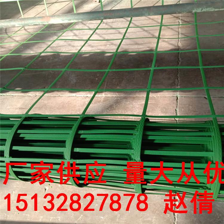 綠色植物攀爬網價格綠色植物攀爬網鋼塑爬藤網現貨批發