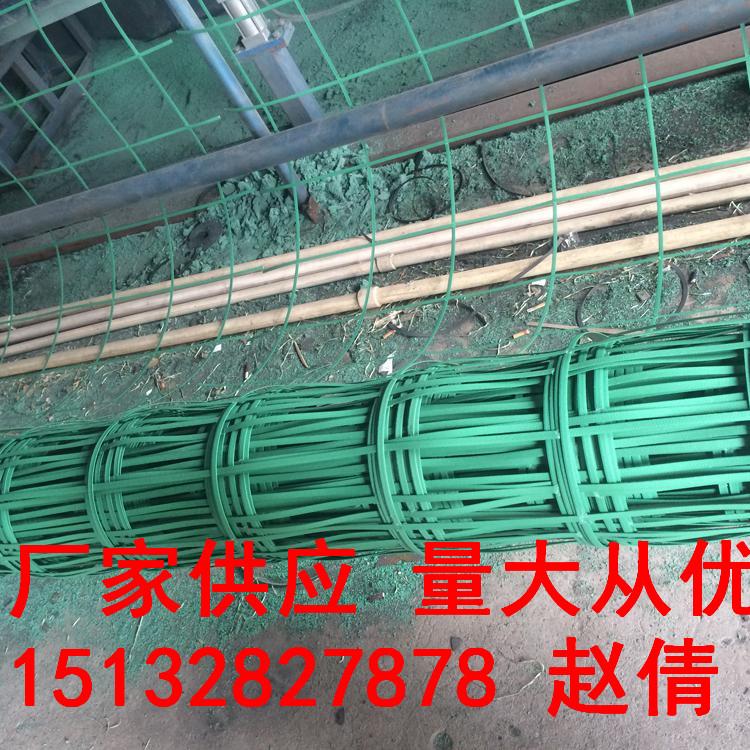 20cm*20cm植物爬藤網種草綠化植物攀爬網綠色鋼塑格柵