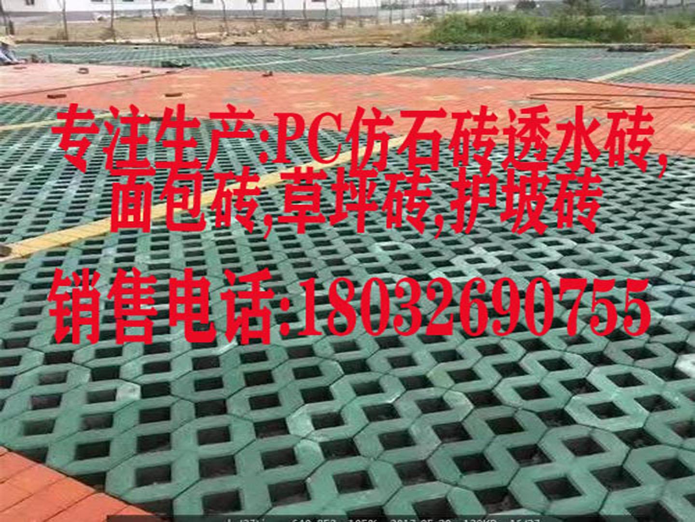 石家莊草坪磚有質保的草坪磚18032690755水泥彩磚廠家歡迎參觀考查