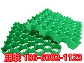 威海塑料植草格服务商