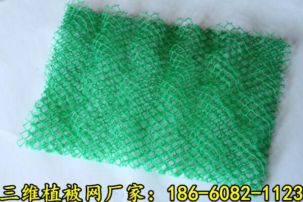 萍乡三维植被网有限公司欢迎你