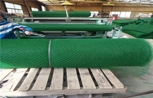 简阳植草三维土工网垫厂家价格