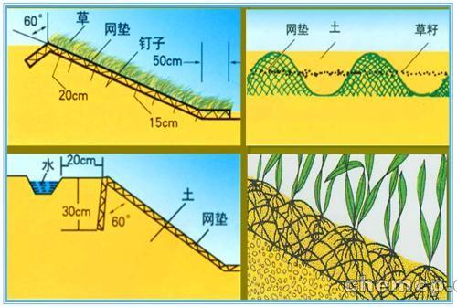 株洲现货种草三维植被网全国超---