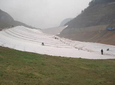 生產企業鶴山垃圾填埋土工布