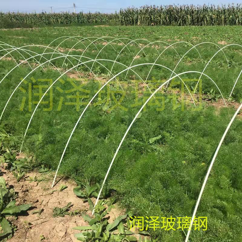 河北潤澤供應可定制花卉蔬菜育苗棚拱桿農用大棚支架桿